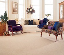 carpet and rug cleaners Barrie