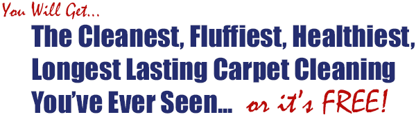 Carpet and Upholstery Cleaners Barrie Ontario